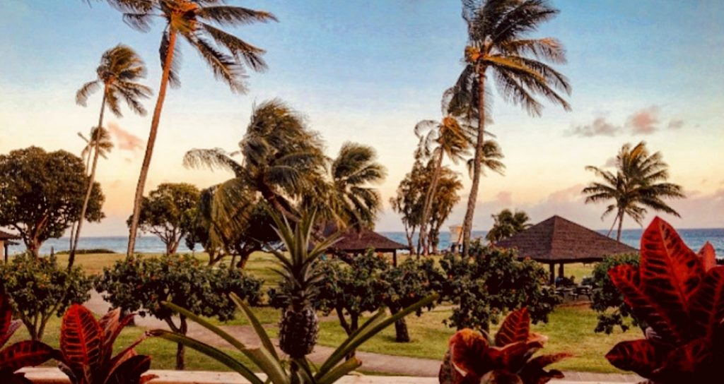 Where to Eat in Kauai for Sunset Dinner and Drinks