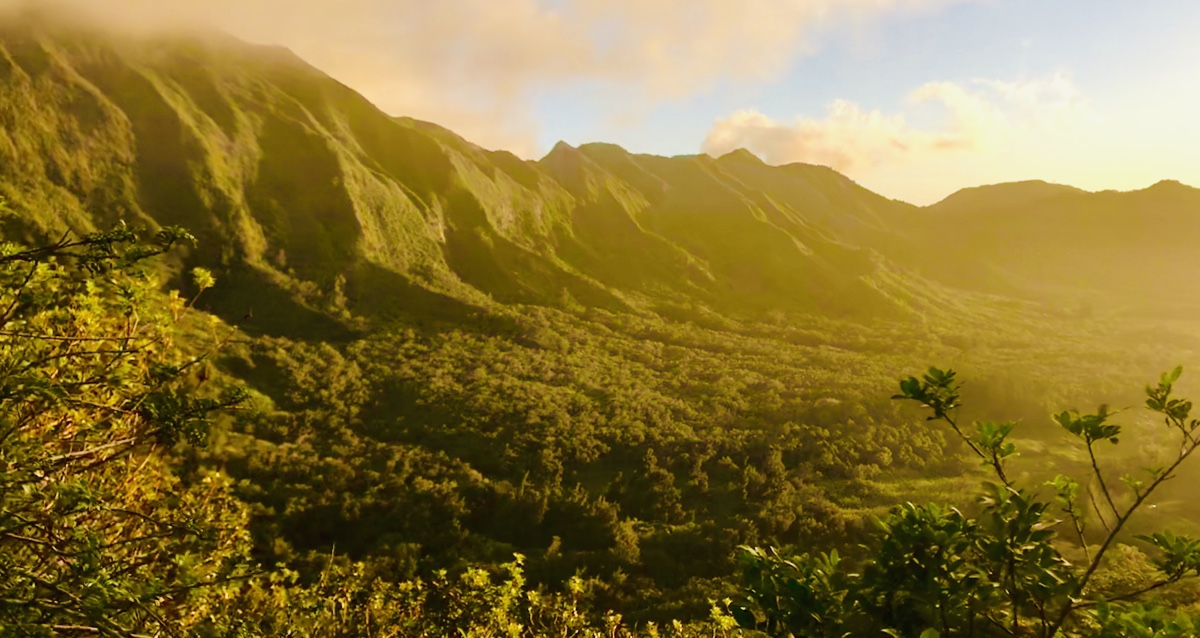 An Instagram Worthy Hike in Oahu